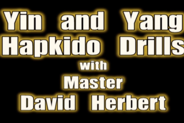 """Yin and Yang Hapkido Drills"" with Master David Herbert"